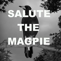 session_salutethemagpie.jpg